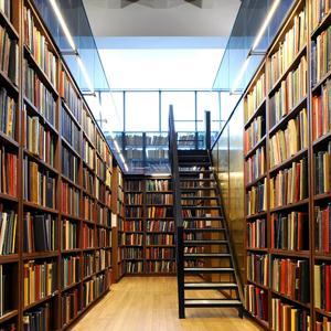 Библиотеки Лысых Гор